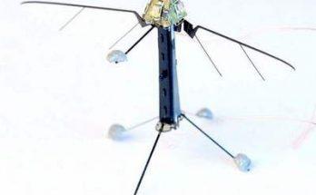 робот насекомое