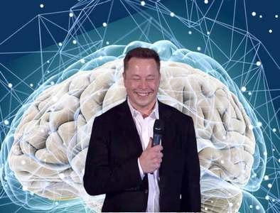 как Маск залезет в мозг